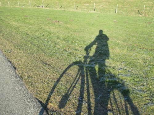 Optische Täuschung - ein ganz normales Fahrrad ...