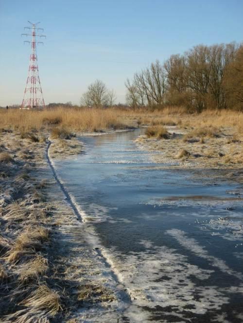 Weg zum Strand?! Offenbar ist der muldiger, als wir das in Erinnerung hatten. Sturmflutwasser steht gefroren auf unserem Weg. Das Eis ist zu dünn ...