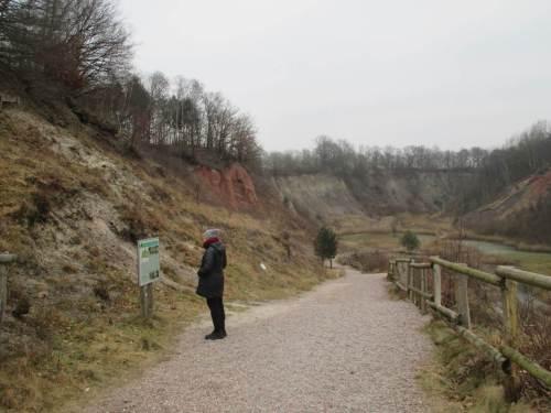 Informative Tafeln erläutern Geologie, Erdgeschichte inkl. Gegenwart mit Tieren und Pflanzen.