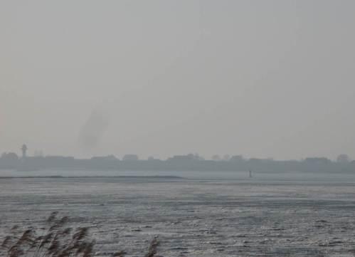 Bei dem tagelangen Ostwind und Niedrigwasserabfluss der Elbe liegt das Tnw seit Tagen ca. 1 m unter dem Normalwert.