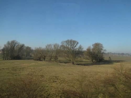 Selten sind Altbaumbestände eingestreut - soweit der Zug nicht Waldbereiche streift.