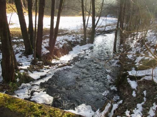 Brandenburgischer Moränenbach in schmaler Aue, Gefälle wie im waldeckischen Mittelgebirge.