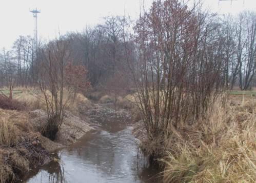 Danach - Rausche mit Uferschutz, hervorragende Wirkung, kein Anstau.