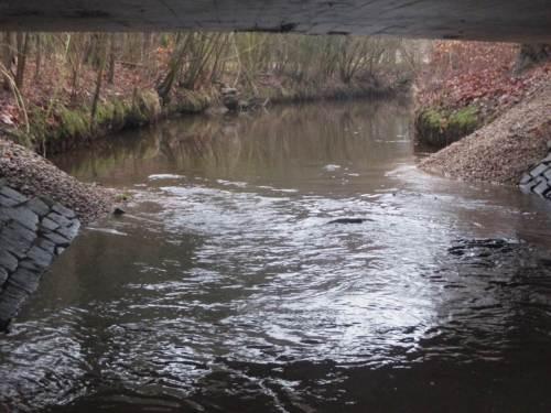 Fertig - Blick bachauf. Hochwässer werden in ihrem Weg liegende Kiesel gekonnt im Bach an die richtigen Stellen verfrachten.
