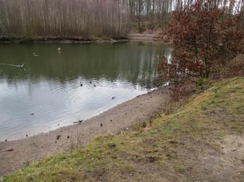 Auf der Geest zeigen stehende Gewässer das Wasserdefizit. Zwischen 0,5 und 1 m fehlen - ob die bis zum Blattaustrieb noch dem Grundwasser und auch diesen Stillgewässern zugeführt werden?