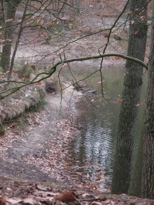 """Wenn """"von oben"""" nicht nachgefüttert wird, seitwärts durch vertiefte Fliessgewässer abgeführt und von unten noch Grundwasser entnommen wird, kommt halt solch Anblick im Frühjahr dabei raus. Möge es im Sommer nicht ganz fürchterlich werden."""