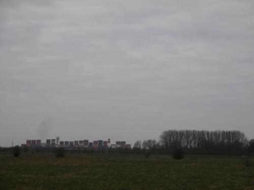 IMG_2381 - jenseits des Hauptdeichs ein 360m Klasse-Containerfrachter, daneben hoher Weiden-PappelAuwaldrest